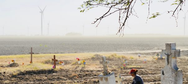 Placing flowers during a dust storm