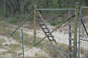 Two wooden ladders along one segment of fencing on North La Copa Ranch