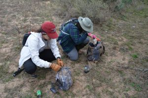 Sammi and Tanya investigating the contents of abandoned backpacks, searching for ID and info.