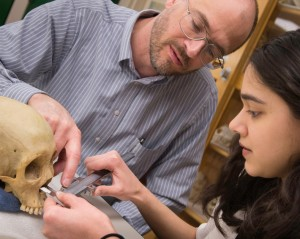 Dr. Nawrocki and graduate student Amanda Khan taking measurements from a human cranium