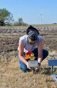 Placing flowers around the marked burials