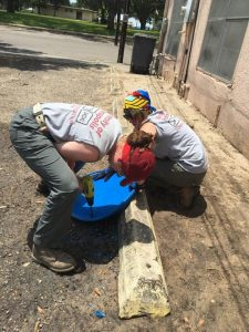 Preparing new water stations at the STHRC